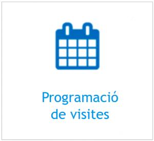 Programació de visites