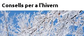 Consells per a l'hivern